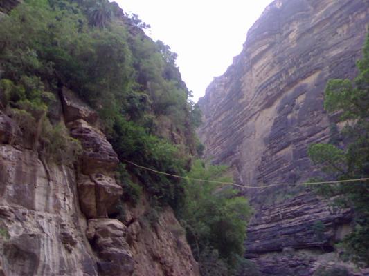 عندما تتنوع الطبيعة يكون جمال الطبيعة .. Qahtaan-20060910-1157906205