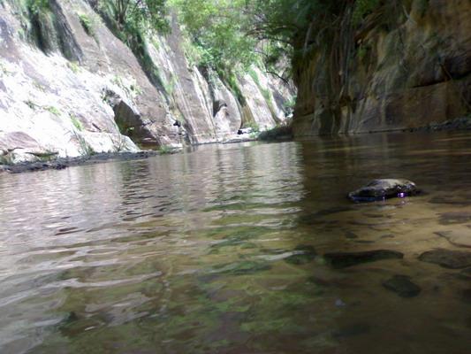 عندما تتنوع الطبيعة يكون جمال الطبيعة .. Qahtaan-20060910-1157908893
